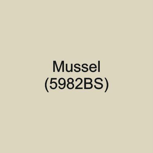 Mussel (5982BS)