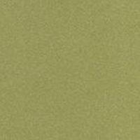 Trespa Meteon Mustard Yellow M40.4.3